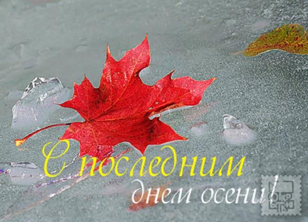 Вологда новый источник цены в новый год